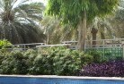 Abergowrie Tropical landscaping 13
