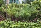 Abergowrie Tropical landscaping 2